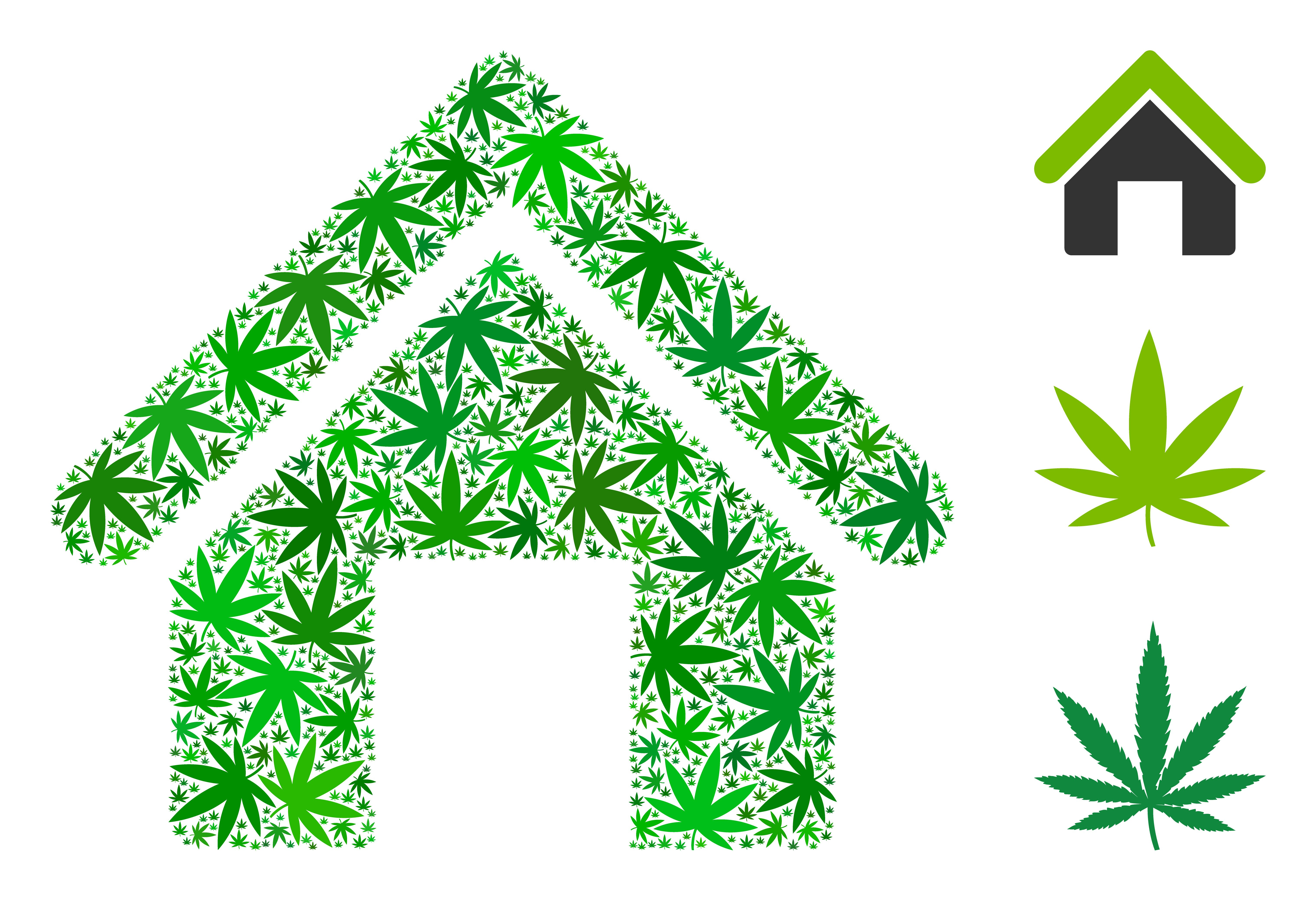marijuana issues for realtors
